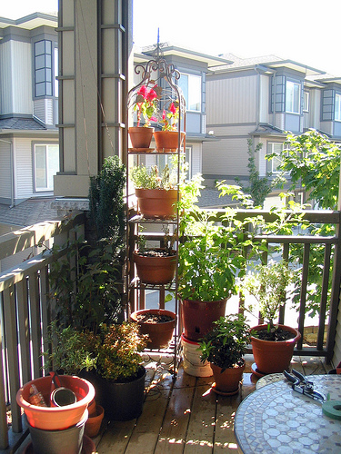 container-small-balcony-garden-ideas